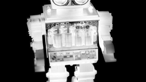 Elvis Negative Robot
