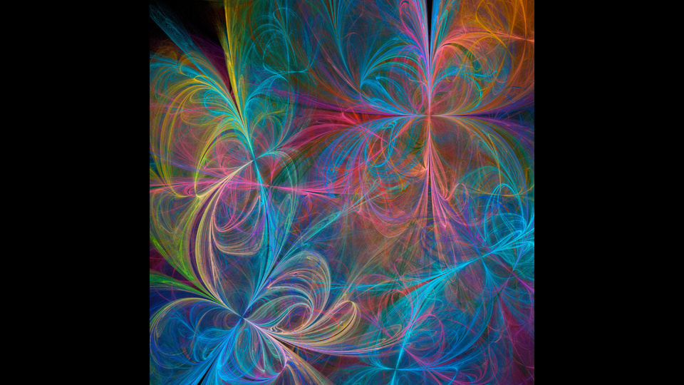 Floral fantasyby ImageNature