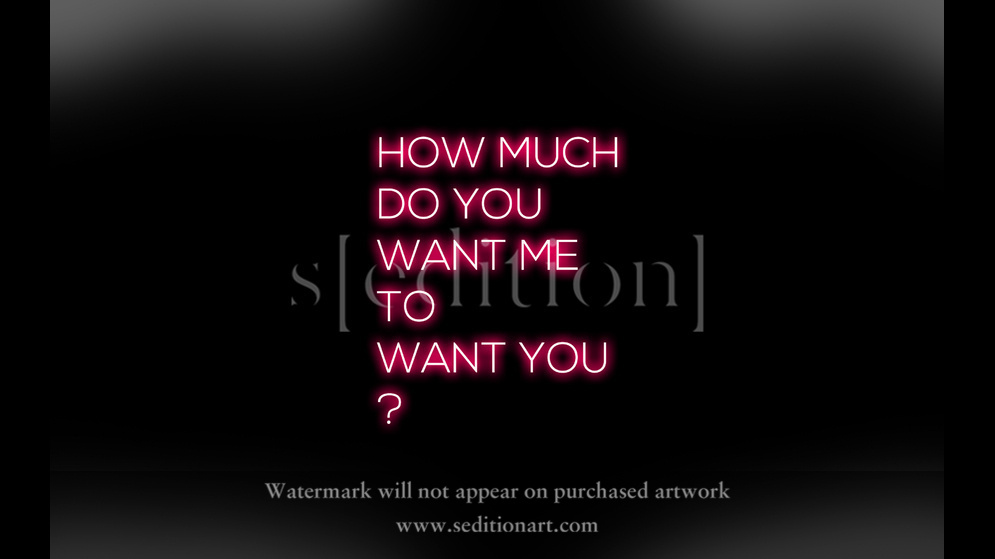 How Much Do You Want Me To Want You? by Ramiro Baldivieso