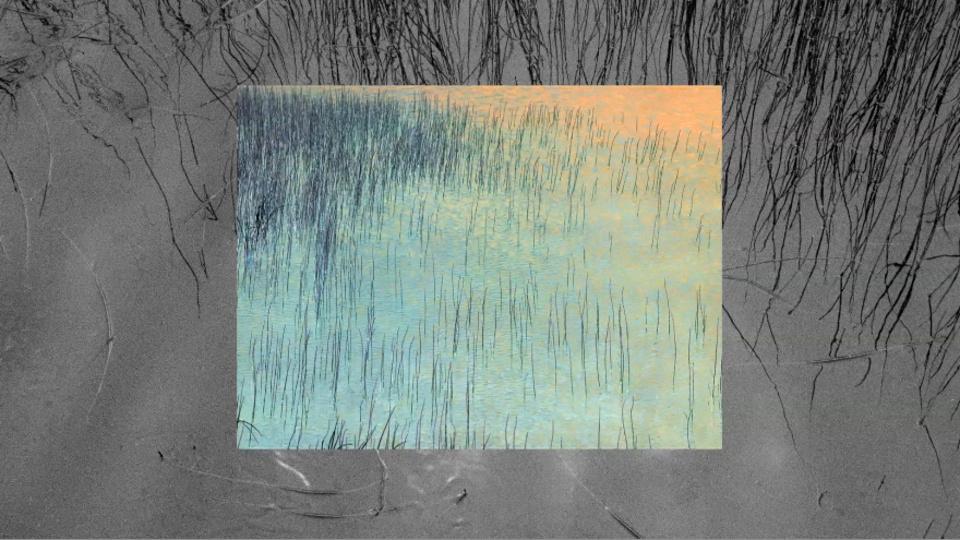 Incrementum Window - Reed Field 1by Tim Trompeter