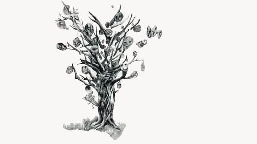 the tree with many heads
