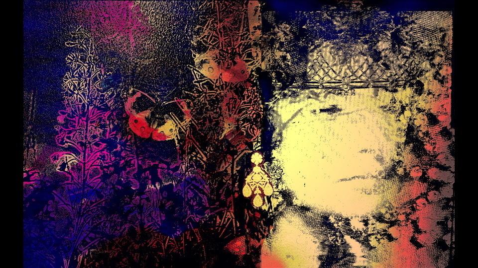 LIZ , Lenkiewicz, Alice, 2012, 6000 x 3741 pixels, 11.6 MBby Alice Rhenna Lenkiewicz