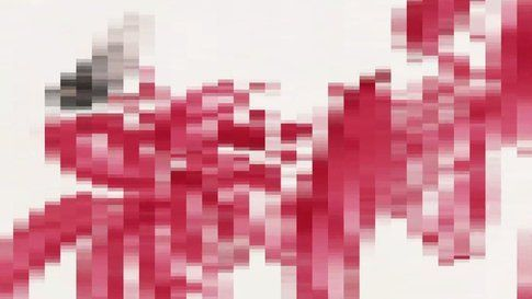 Segment1: Pink - Balance of the ink