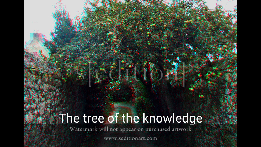 The tree of the knowledge by Lénie Blue