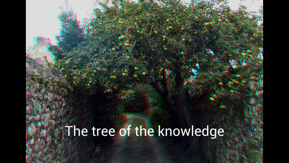 The tree of the knowledgeby Lénie Blue