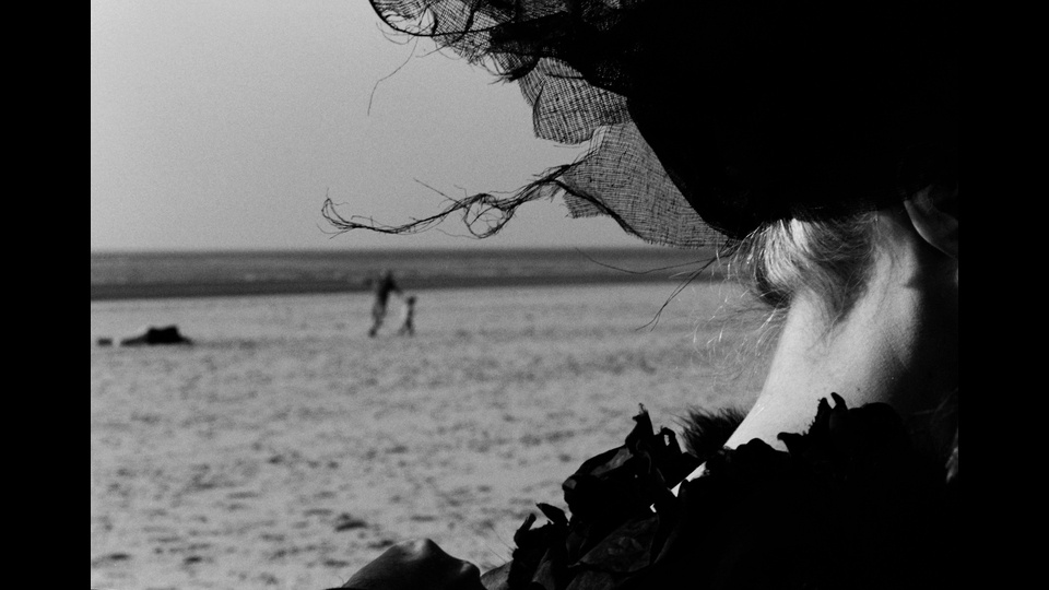 In The Windby Donata Wenders
