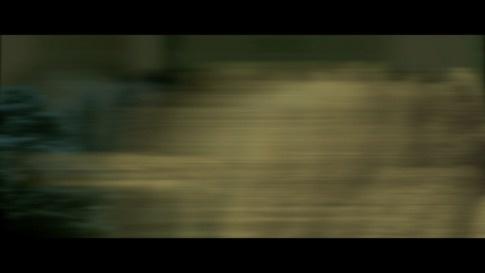 Running Forest