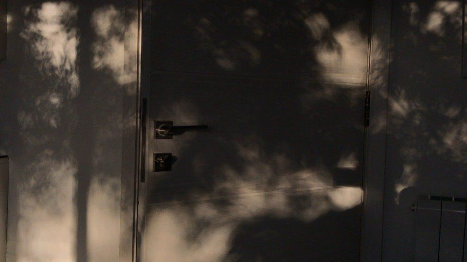 Shadowsby Imran Qureshi