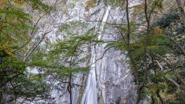 Japan waterfall in autumn