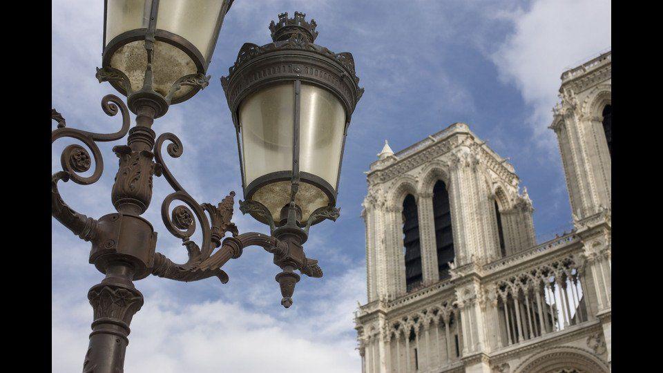 France, Paris, 2008, Notre Dame de Parisby Peter Marlow