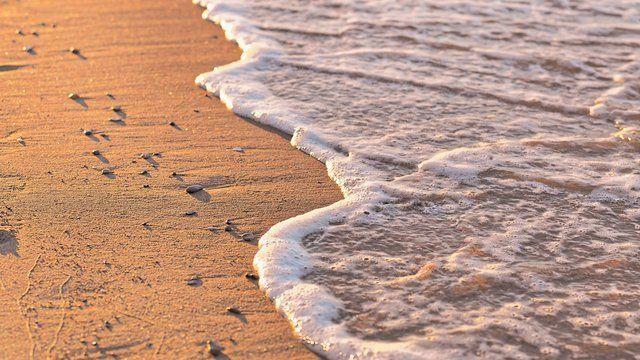 Morning Shore
