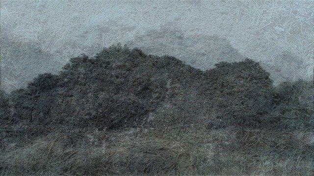 Lands 33