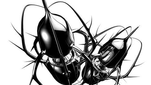 Spide 03/ Black&White