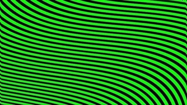 Black and Green Stripes Forever
