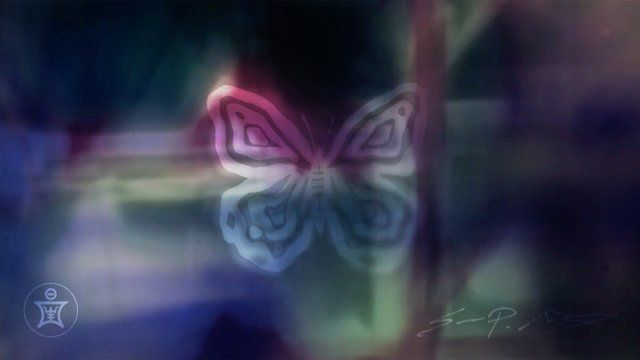 The butterfly's dance with light. - Sean Martorana