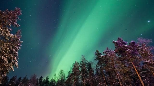 Winterfire Northern Lights 2