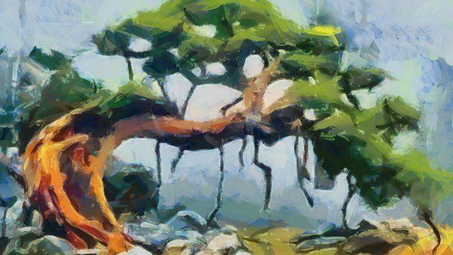 Bonsai painting
