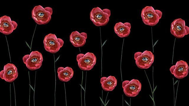 Visionary Flowers