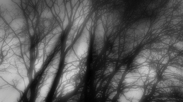 Dark Beams