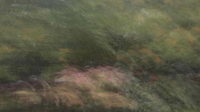 Road to Impressionism