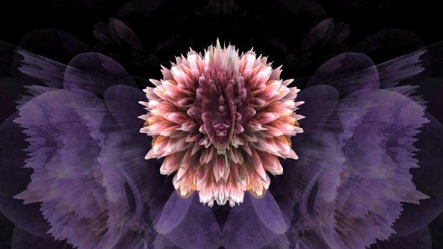 Cat-Flower#04